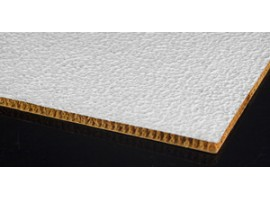 Composite Panel for building